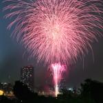 北海道新聞社が主催する2015年の花火大会12会場まるごとまとめ