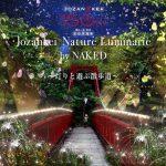 定山渓温泉のライトアップイベント 灯りと遊ぶ散歩道  6月1日より開催